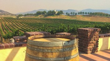 Temecula Wine Country Excursion