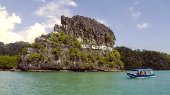 Island Cruise Half-Day Excursion