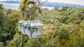 Canopy Zip line Tour with Aerial Tram Ride