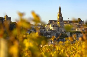 Saint Emilion Full-Day Wine Tour