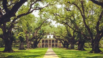 Small-Group Oak Alley & Laura Plantation Tour
