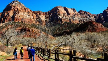 Private Guided Zion National Park Day Tour for 5