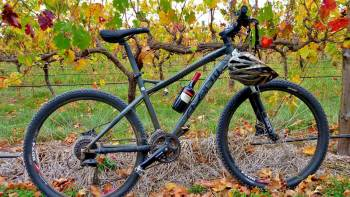 Mclaren Vale Hills, Vines & Wines Bicycle Tour from Adelaide