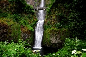Half-Day Columbia River Gorge Waterfalls Tour