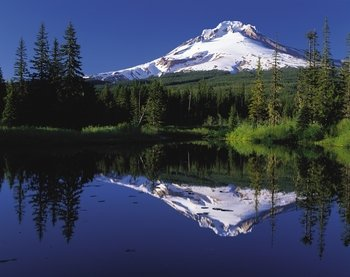 Full-Day Columbia River Gorge Waterfalls & Mt. Hood Tour