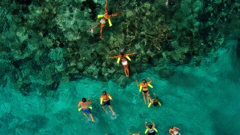 Marinarium Adventure with Catamaran Cruise & Snorkeling