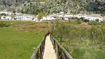 White Villages & Ronda Full Day Tour from Seville