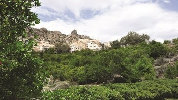 Jebel Akhdar Full-Day 4-Wheel-Drive Tour