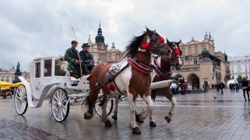 Private Krakow Day Tour by Train with Local Guide