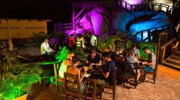 Dinner & Nightlife Tour with Drinks