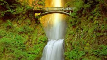 Half-Day Multnomah Falls & Gorge Waterfalls Tour