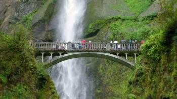 Full-Day Waterfalls & Wine Tasting Tour in the Columbia River Gorge