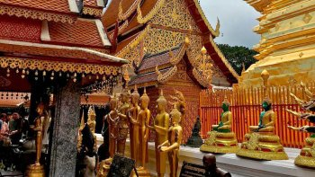 Guided Tour of Wat Phra That Doi Suthep