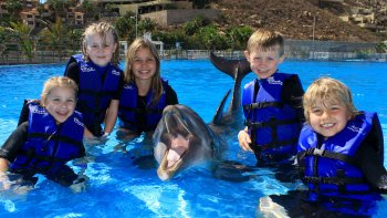 San Jose Dolphin Encounter for Kids