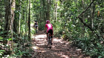 Jaqueira Reserve & Native Forest Bike Tour