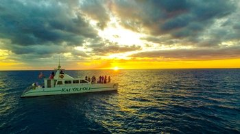 Sunset Snorkel Cruise
