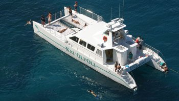 Dolphin-Watching & Snorkeling Cruise