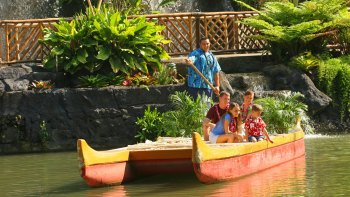 Polynesian Cultural Center, Dole Plantation & North Shore Tour