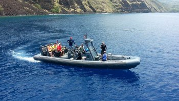 Small-Group Morning Snorkel & Marine Life Encounter Tour
