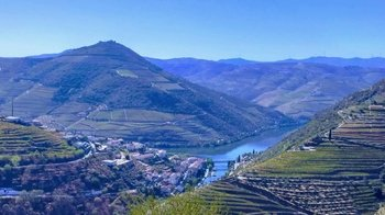 Local Wineries of the Douro Valley Tour