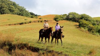 Private Horseback Ride on Piiholo Ranch with Optional Lunch
