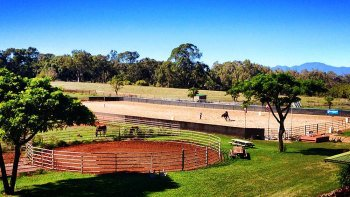 Private Horseback Riding Lesson at Piiholo Ranch