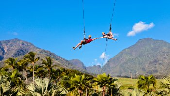 Zipline at Maui Tropical Plantation
