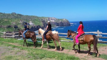 Oceanfront Horseback Trail Ride