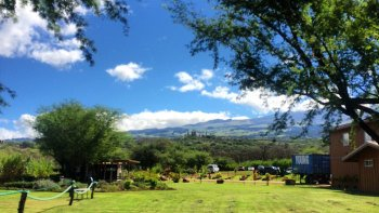Maui Country Farm Tour