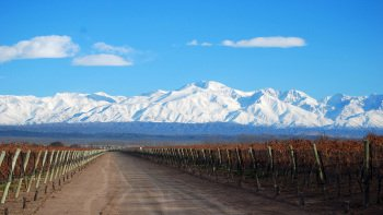 4-Day Mendoza Tour