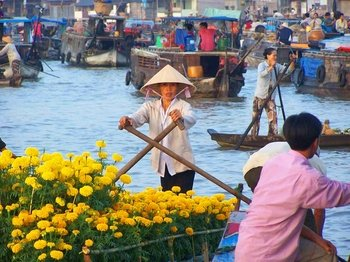 Cu Chi Tunnels & Mekong Delta VIP Tour with Transfer by Limo