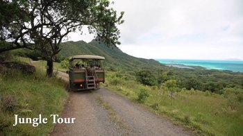 Jungle Expedition & Nature Tour