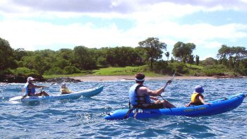 South Shore Kayak Trip with Snorkelling at Turtle Town