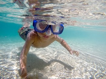 North Shore Tour & Snorkelling