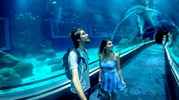 AquaRio Aquarium Admission with Transportation