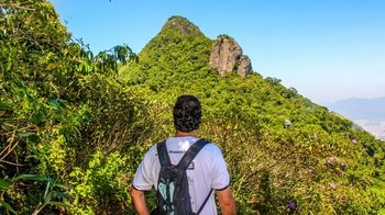 Guided Tijuca National Park Tour