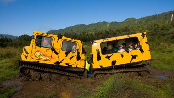 Rainforest Off-Road Hagglund Adventure