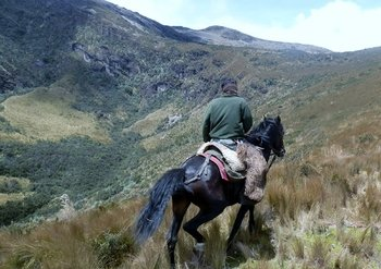 Small-Group City Tour & Horseback Ride to Pichincha Volcano