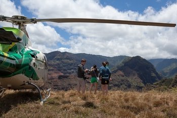 Things to do in kauai activities attractions travelocity helicopter ride with kauai refuge landing solutioingenieria Choice Image