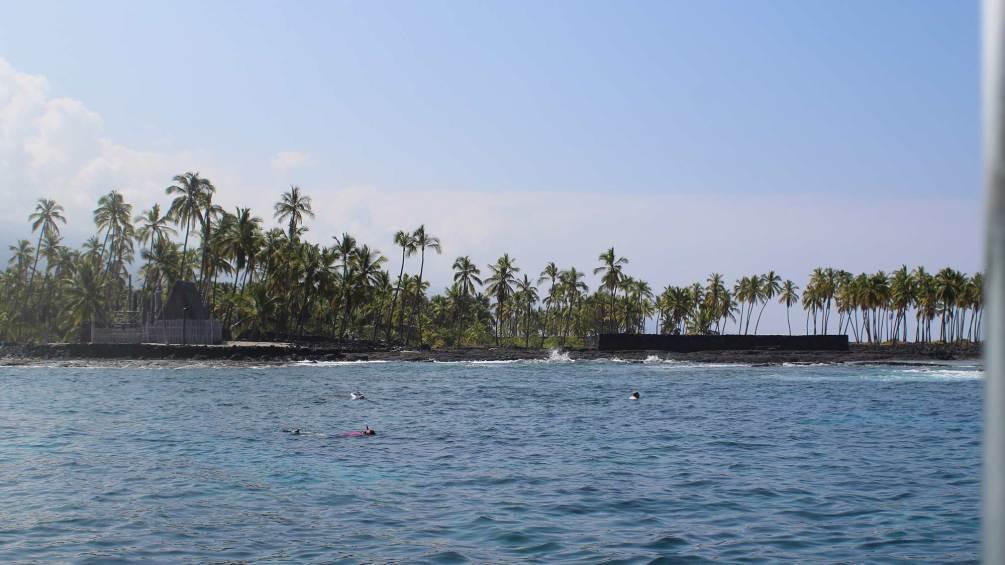 Snorkeling in Keauhou: Keauhou Snorkeling Tours | Travelocity