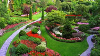 Private Luxury City & Butchart Gardens Tour