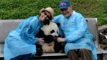 Private Wuhou Temple & Jinli Tour with Optional Panda Holding Experience
