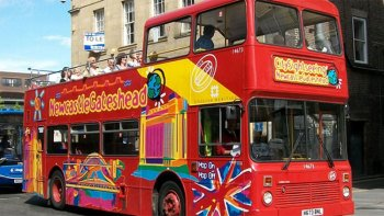 Kustexcursie: hop-on, hop-off-bustour door Newcastle