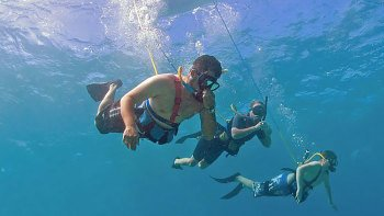 Snorkelling Cruise to Molokini Crater & Turtle Town