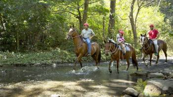 Horseback Riding Tour of 3 Rincón de la Vieja Waterfalls