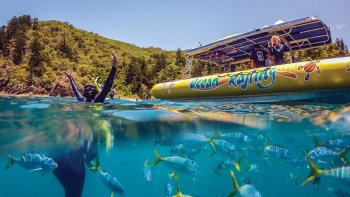 Ocean Rafting & Whitsundays Day Tour