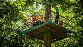 Ultimate 3 Rainforest Adventure; Hike, Tram Ride & Zipline