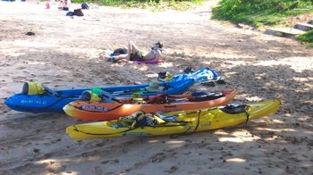 Kayak & Snorkel Adventure to Observe Green Sea Turtles