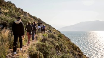 Small-Group Hiking Tour in Argolis & Arcadia
