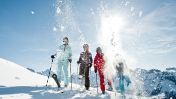 Swiss Ski Experience with Lift Ticket & Lesson